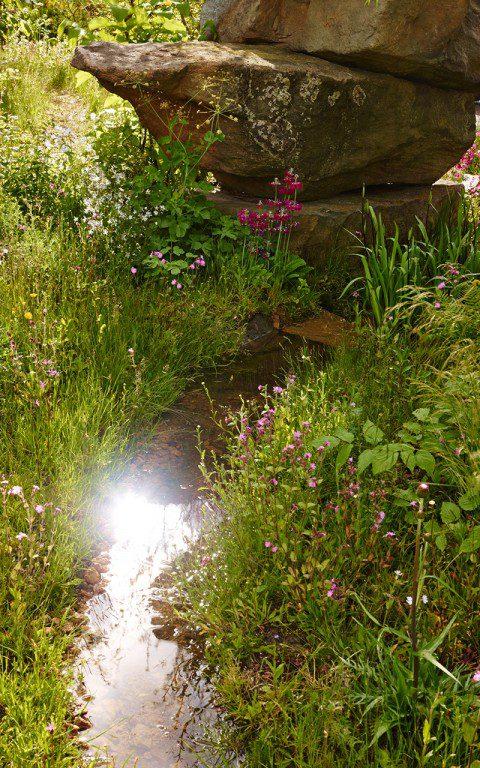 Chatsworth/Laurent Perrier Garden/Chelsea Flower Show 2015/Designed by Dan Pearson