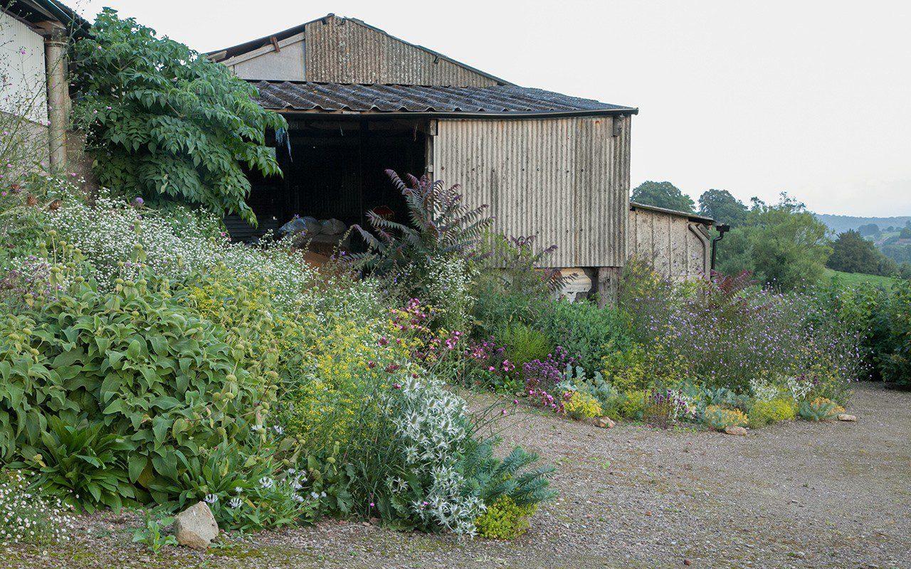 Gravel planting at Hillside - Designer: Dan Pearson