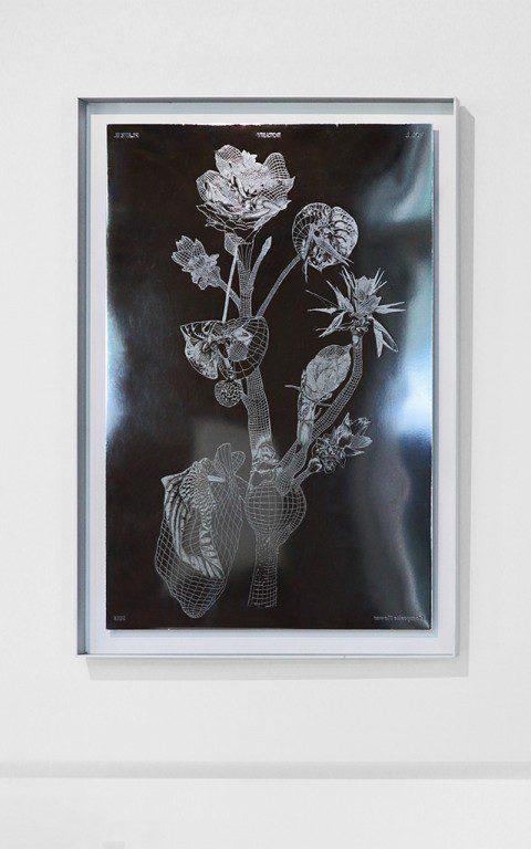 Marcin_Rusak_Botanical_Metal_Plates_05