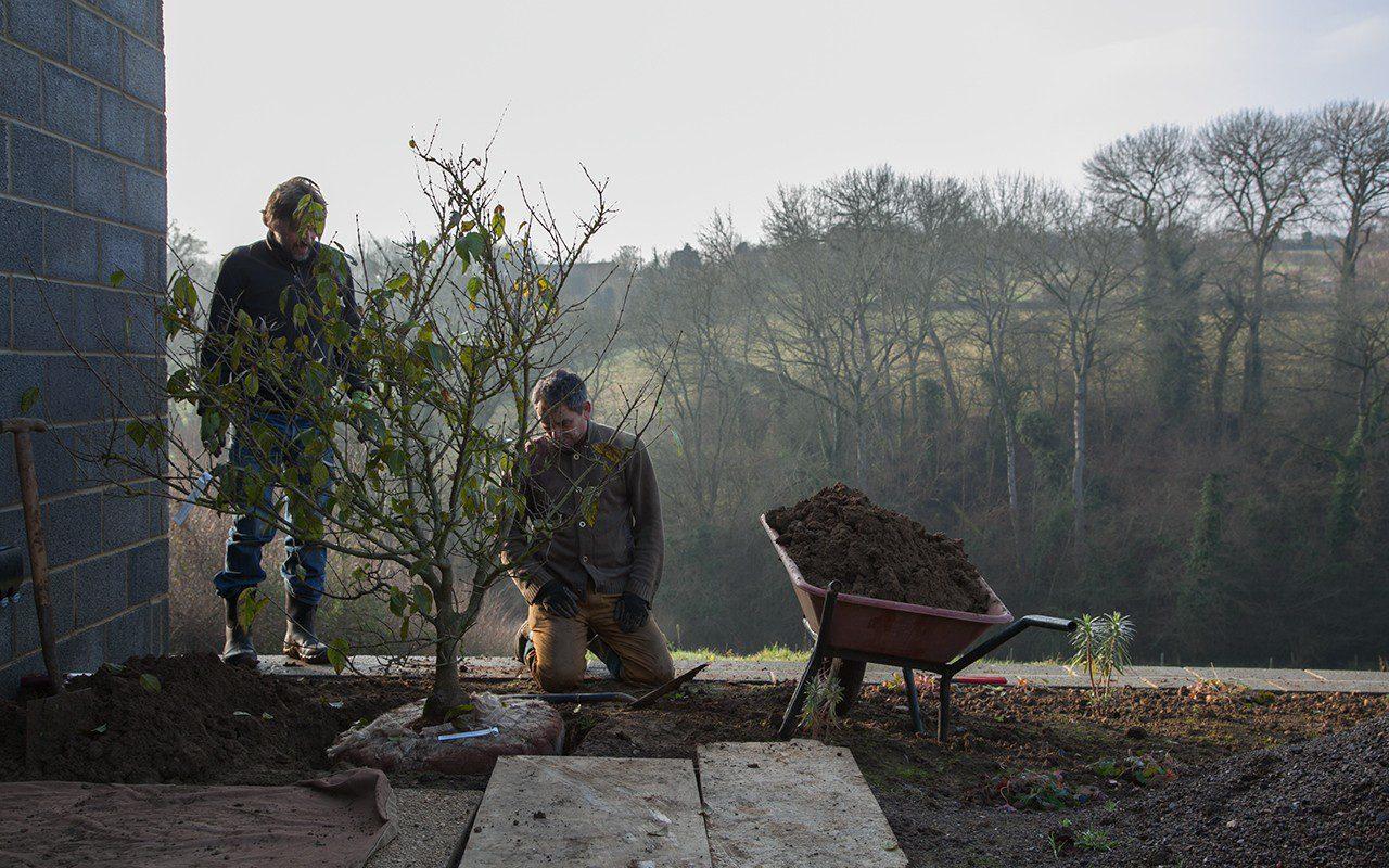 Dan Pearson and Ian Mannall planting Chimonanthus praecox