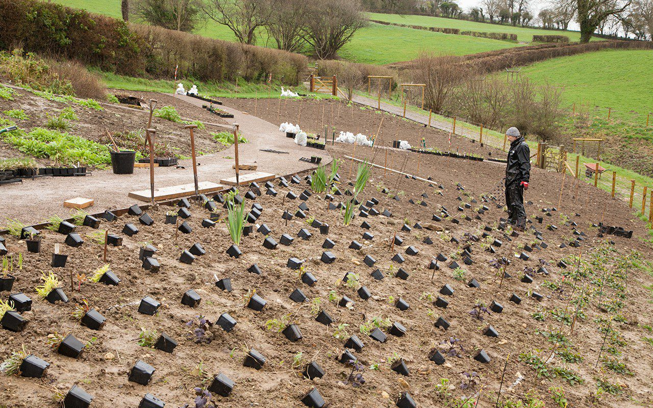 Dan Pearson laying out his new garden in Somerset