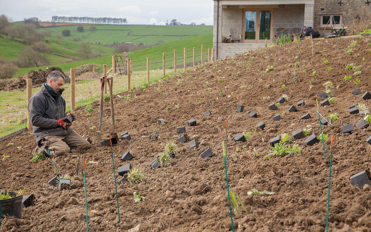 Ian Mannall planting up Dan Pearson's Somerset garden