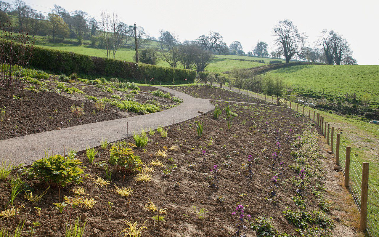 Dan Pearson's new garden in Somerset 2 weeks after planting - April 2017