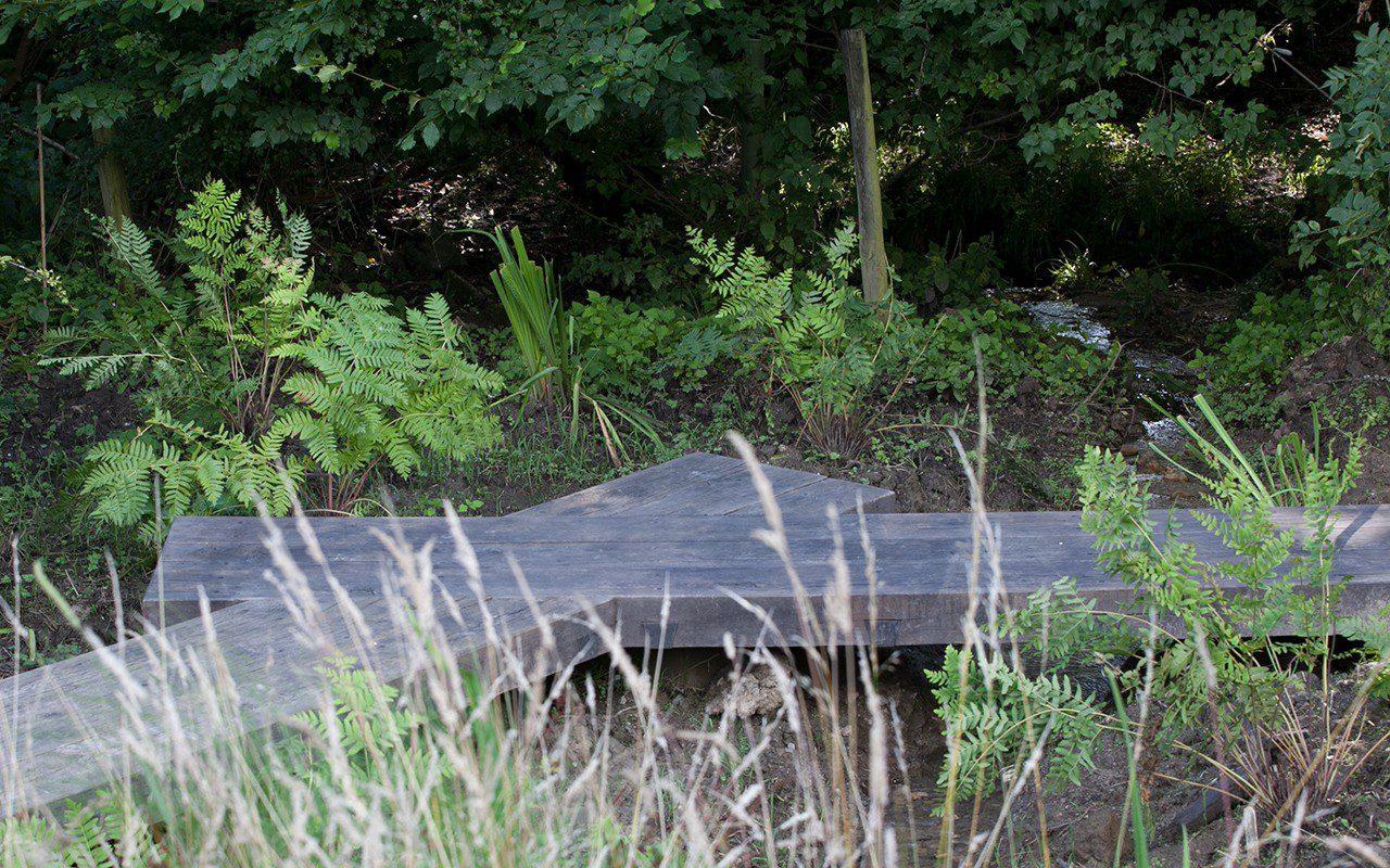 Osmunda regalis planted by the bridge on Dan Pearson's Somerset property. Photo: Huw Morgan