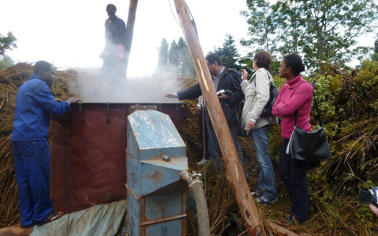 steam-distillation-in-zambezi